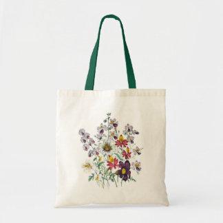 Fringeflowers and Velvet Trumpet Flowers