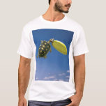 Frisbee Turtle T-Shirt