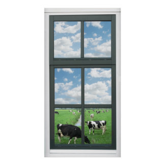 Frisian Holstein Cows Farm Faux Window View Poster