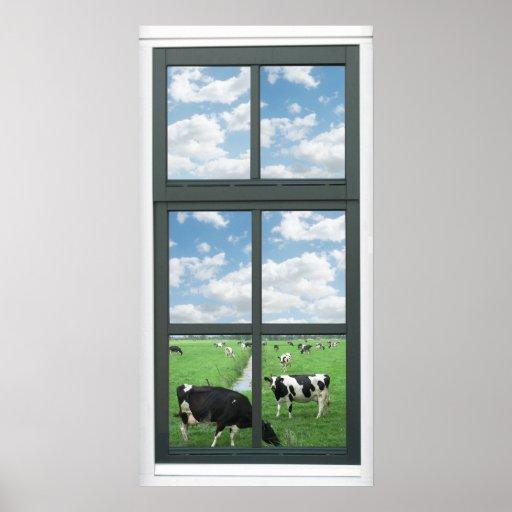 Frisian Holstein Cows Farm Faux Window View Poster