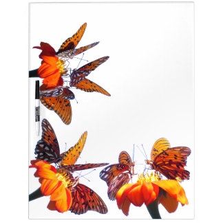 Fritillary Butterflies Sunflower Flower Board