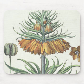 Fritillary: Corona Imperialis florum classe duplic Mouse Pad