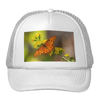 Fritillary Gulf Butterfly Gifts and Apparel Mesh Hat