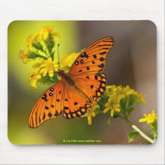 Fritillary Gulf Butterfly Gifts and Apparel Mouse Pad