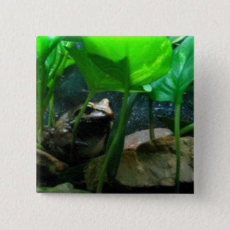 Frog 15 Cm Square Badge
