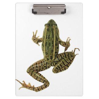 Frog 2 clipboard