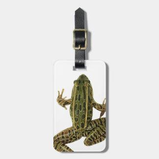 Frog 2 luggage tag