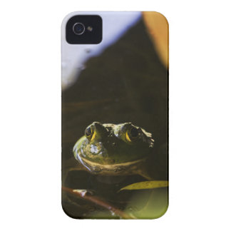 Frog 4/4S Barely There Case - Mate Case