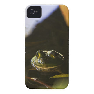 Frog 4/4S Barely There ID Case