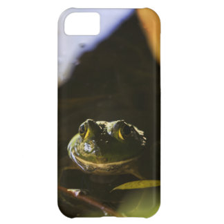 Frog 4 Barely There Case - Mate Case iPhone 5C Case