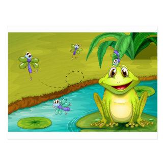 Frog and flies postcard