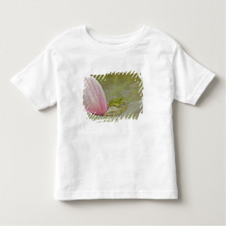Frog and lotus flower petal, China, Toddler T-Shirt