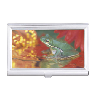 Frog and reflections among flowers. Credit as: Business Card Holder