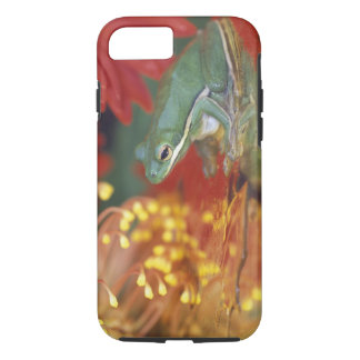 Frog and reflections among flowers. Credit as: iPhone 8/7 Case