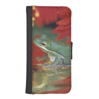 Frog and reflections among flowers. Credit as: iPhone SE/5/5s Wallet Case