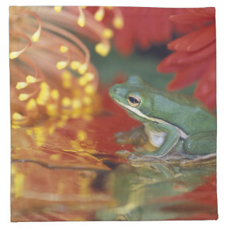 Frog and reflections among flowers. Credit as: Napkin