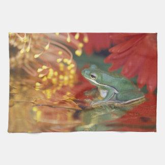 Frog and reflections among flowers. Credit as: Tea Towel