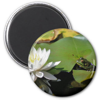 Frog and Water Lily Nature Photography Magnet