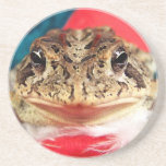 Frog Christmas , Tinsel, feathers, santa pattern Coasters