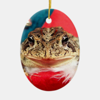 Frog Christmas , Tinsel, feathers, santa pattern Double-Sided Oval Ceramic Christmas Ornament