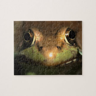 frog face jigsaw puzzle