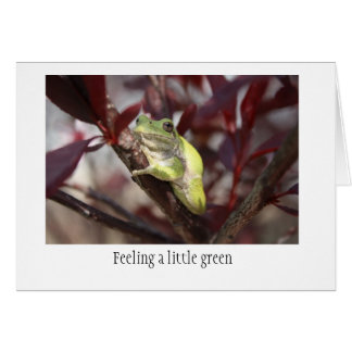 Frog Get Well Card