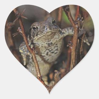 Frog Hanging Around Heart Sticker