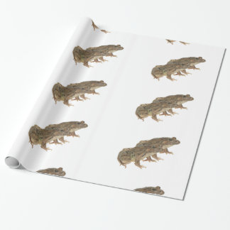 Frog image for Glossy-Wrapping-Paper Wrapping Paper