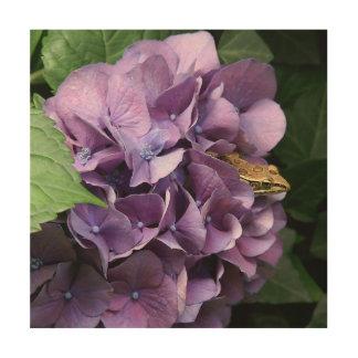 Frog in a Hydrangea, Wood Photo Print. Wood Wall Art