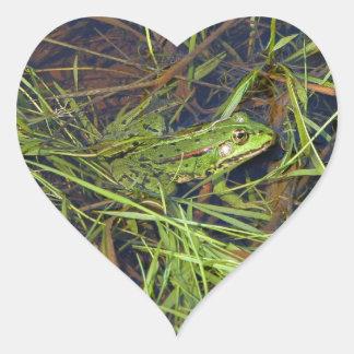 Frog in river heart sticker
