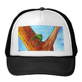 Frog in the tree hats