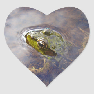 Frog in Water Stickers