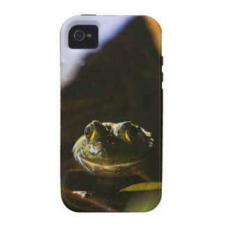 Frog iPhone 4 Tough Case-Mate Case Vibe iPhone 4 Case