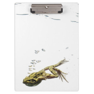 frog jumping and diving into the water clipboard