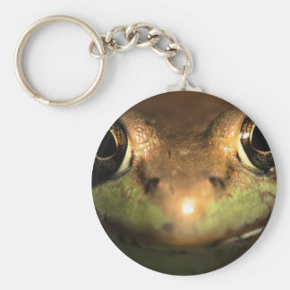 frog key chain