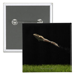 frog leaping off fresh green grass 15 cm square badge