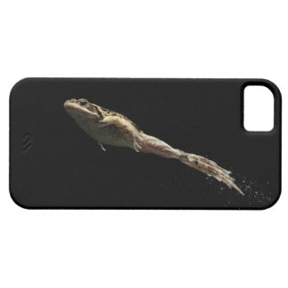 frog leaping off fresh green grass iPhone 5 cover