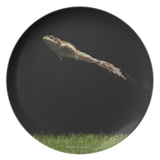 frog leaping off fresh green grass plate