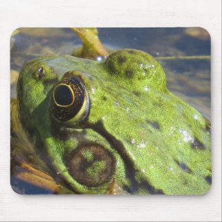 Frog Macro Mouse Pad