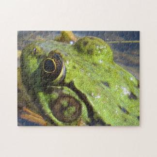 Frog Macro Puzzle