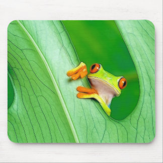 frog mouse mat