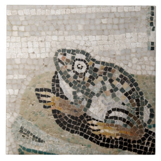 Frog, Nile mosaic, from the House of the Faun Tile