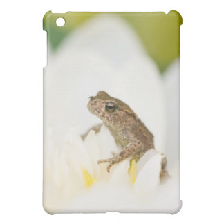 Frog on a Flower iPad Case