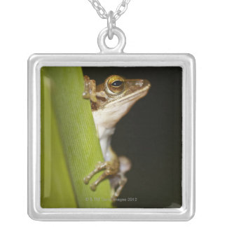 Frog on leaf in profile silver plated necklace