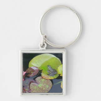 Frog On Lily Pad Close Up  (Nature Scene) Key Chains
