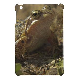 Frog on the Rocks iPad Mini Case
