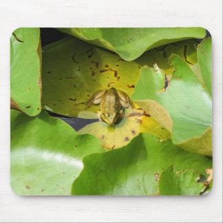 Frog on Water Lilies Mousepad