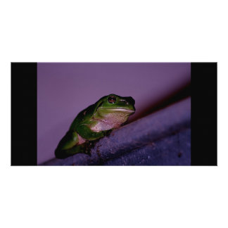 Frog Photo Card Template