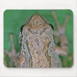 Frog Photo Mousepad