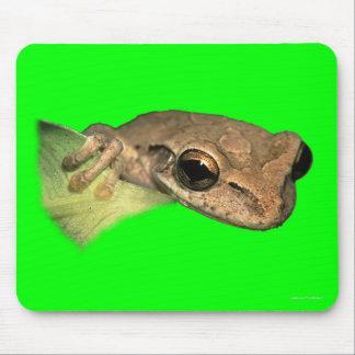 Frog Portrait Mouse Pad